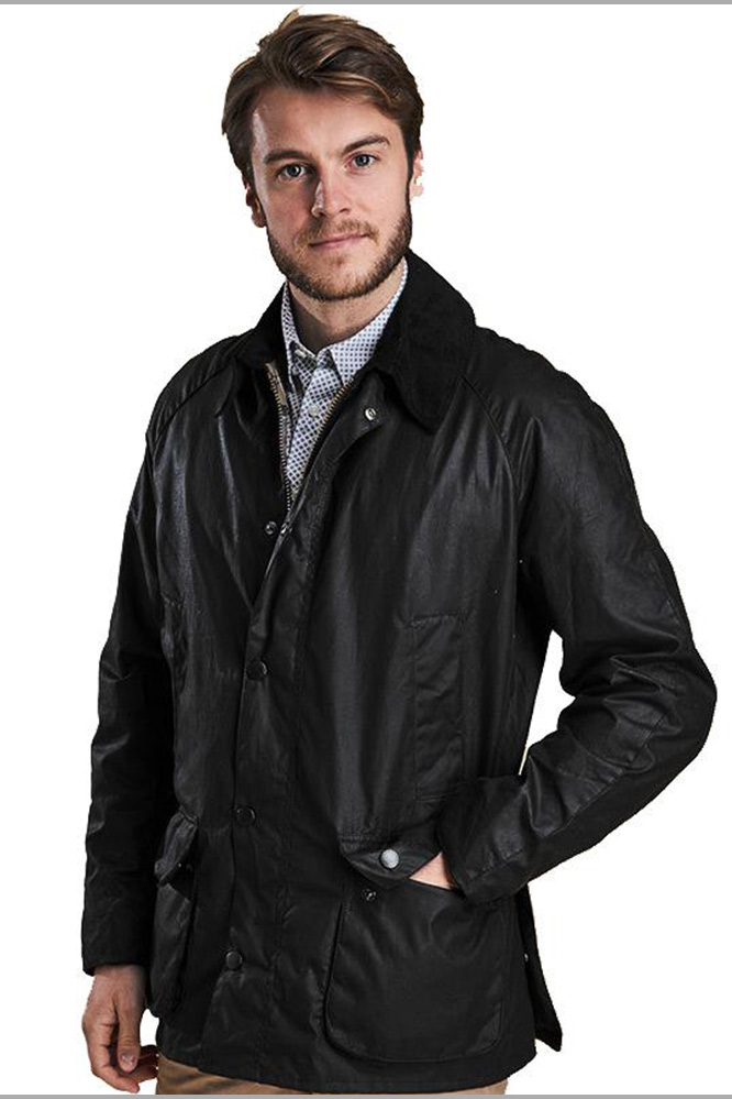 Barbour ashby roma